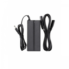 ELB 500 TTL Charger